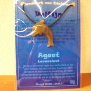 Edelsteenhanger Dolfijn / grote kaart AANBIEDING