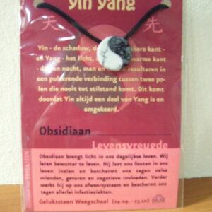 Edelsteenhanger Yin yang / grote kaart AANBIEDING