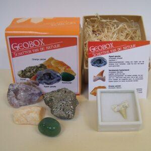 Geobox mineralen fosielen doos