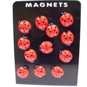 liefheersbeestje magneet 3.5 cm